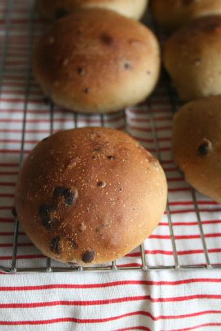 すもも酵母で、抹茶チョコプチパン。_f0082141_1757418.jpg