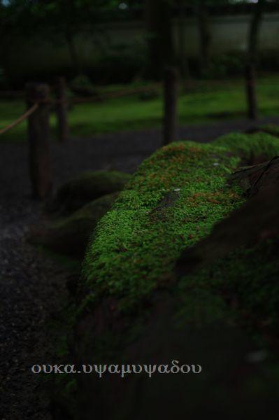 京都・夏・大原の里_a0157263_23245100.jpg