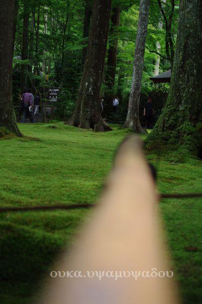 京都・夏・大原の里_a0157263_2335730.jpg