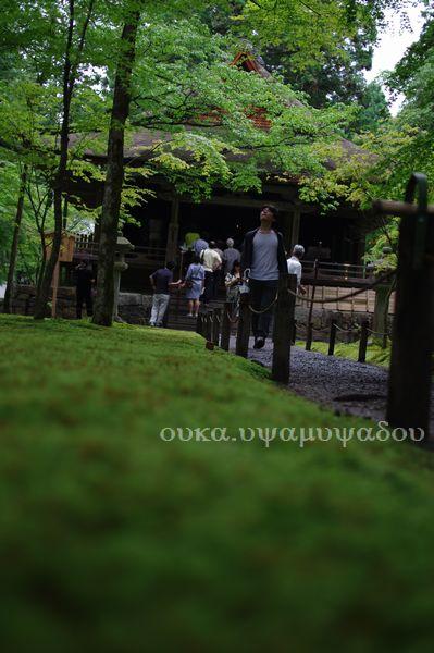 京都・夏・大原の里_a0157263_23496.jpg