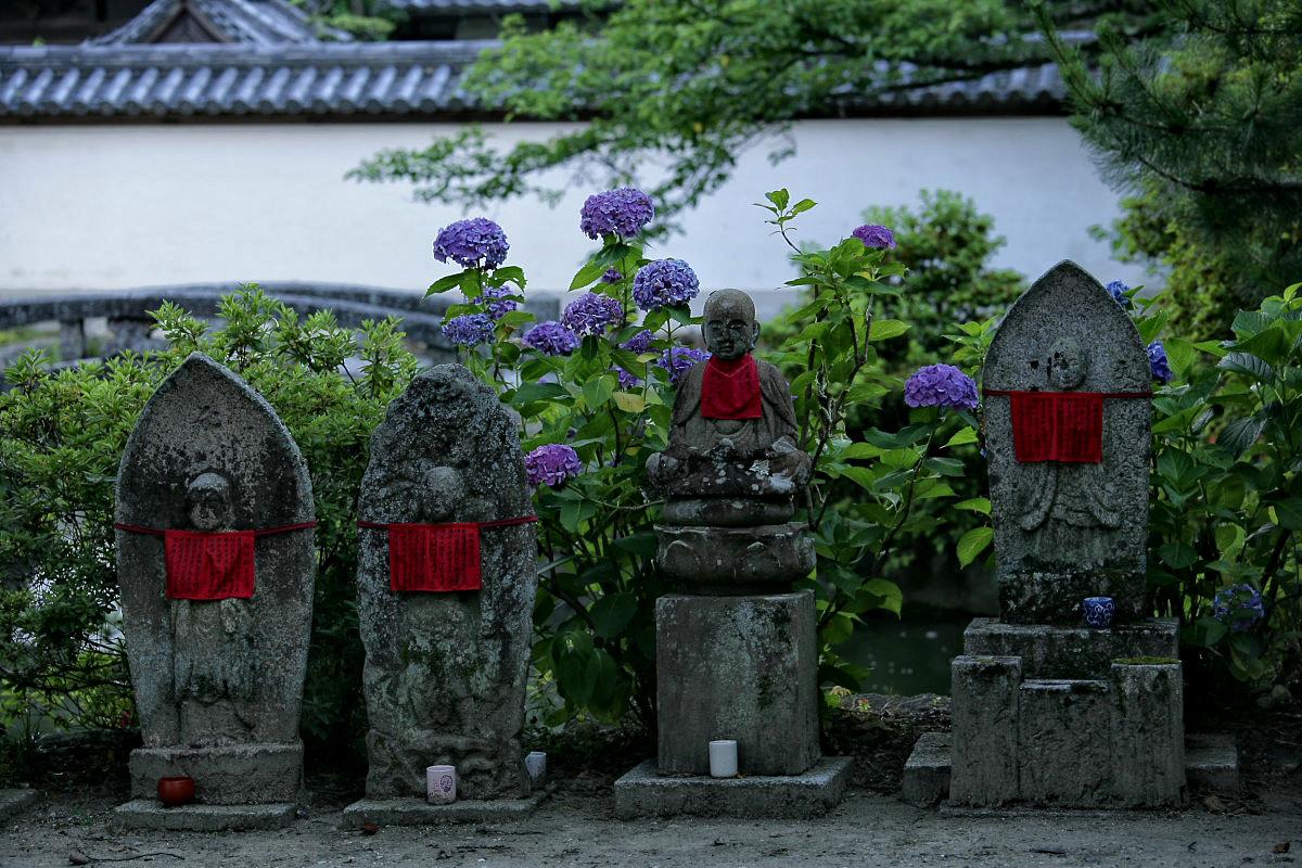 紫陽花 2011  <矢田寺>_f0021869_2392396.jpg