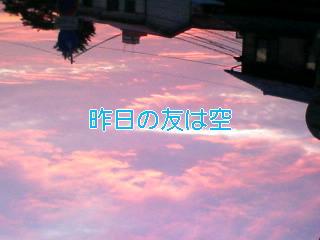 f0059573_12584.jpg