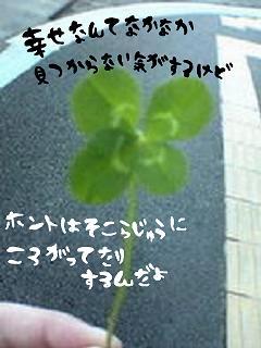 f0145976_16295579.jpg