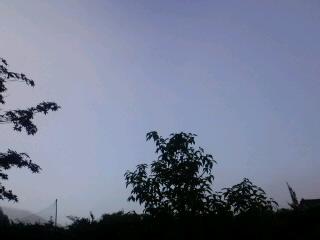 7月12日緊急時避難準備区域の朝。_d0027486_5563165.jpg