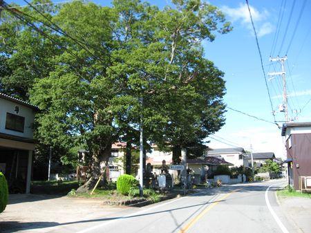 祇園祭_d0089494_1137146.jpg