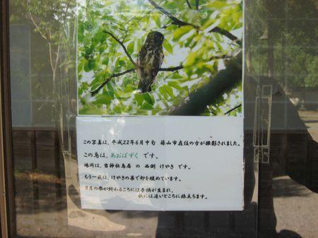 祇園祭_d0089494_11385835.jpg
