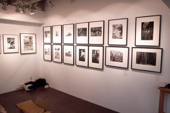 monochrome展、いよいよ明日から開催です。_b0194208_21303367.jpg