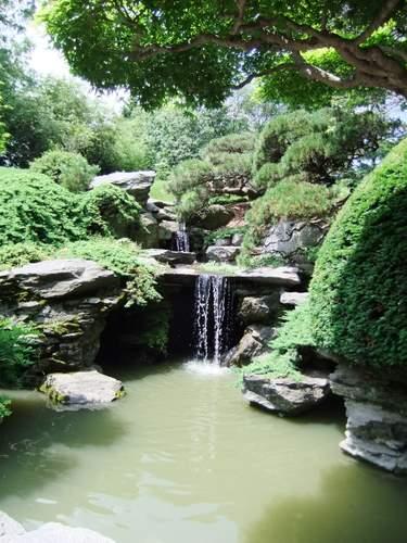 Brooklyn Botanic Garden_c0064534_13535375.jpg