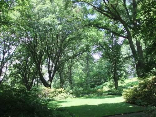 Brooklyn Botanic Garden_c0064534_13584874.jpg