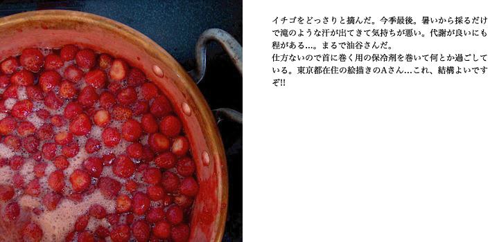 f0220343_1265877.jpg