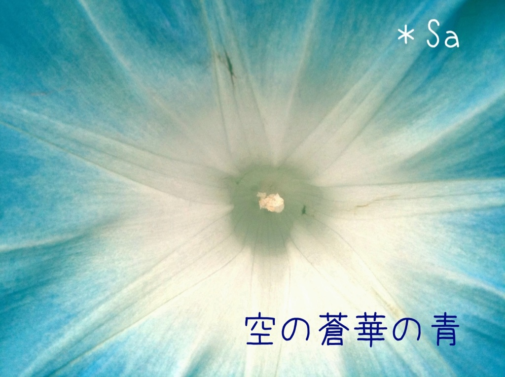 c0220249_20564137.jpg