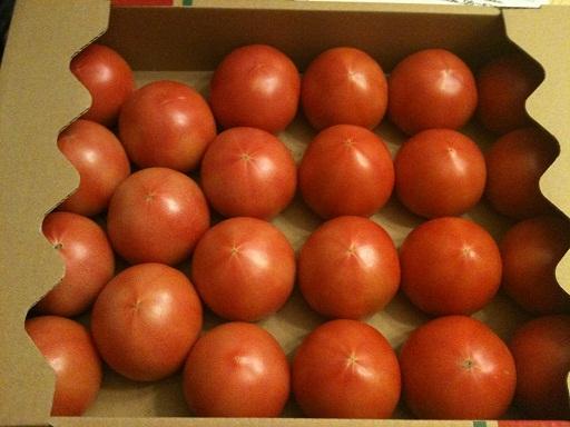 トマト好きな方_f0134268_1703434.jpg