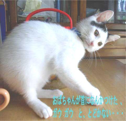 f0197682_010997.jpg
