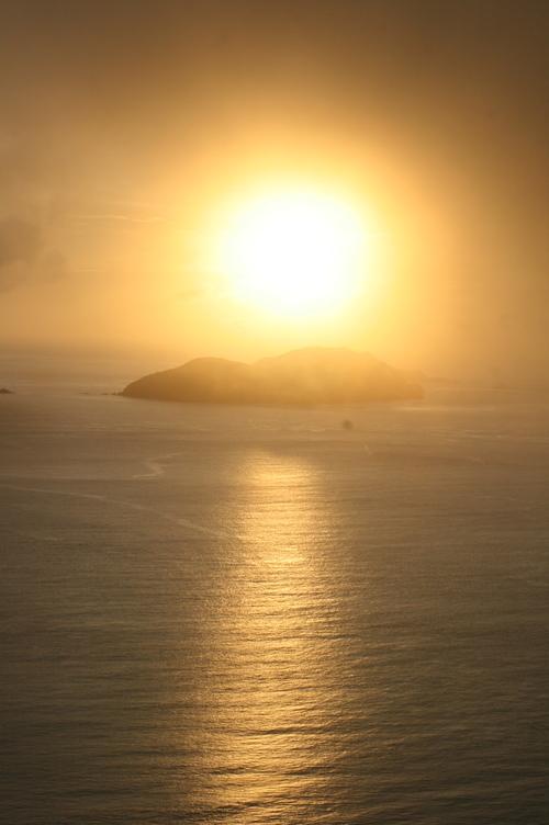 きのこと夕日_e0220493_15531531.jpg