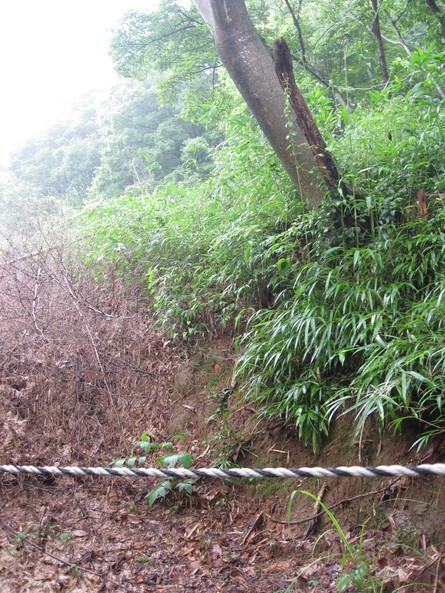 「green green village日田」へ~~_a0125419_1719406.jpg