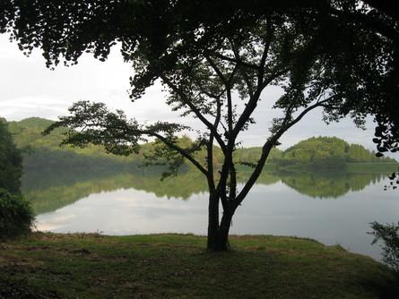 「green green village日田」へ~~_a0125419_17231244.jpg