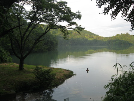 「green green village日田」へ~~_a0125419_1724144.jpg