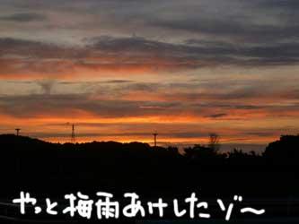 b0057675_1038194.jpg