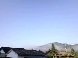 朝霧が晴れていきます。_d0027486_6333225.jpg