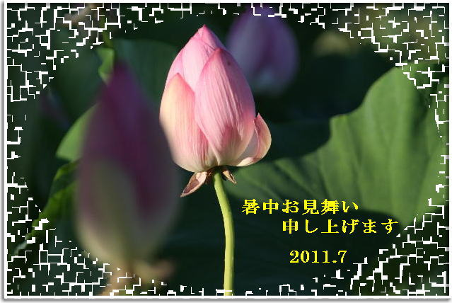 f0164592_716111.jpg
