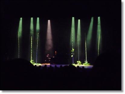 グリーンフィンガーズ花展2011 感動しました!_a0135999_13494574.jpg