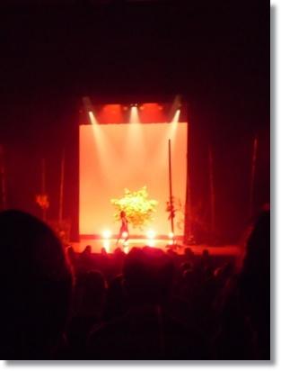 グリーンフィンガーズ花展2011 感動しました!_a0135999_135048.jpg