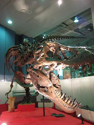 この夏'ゆめぎんが'にティラノサウルスがやってくる!_f0040201_22281427.jpg