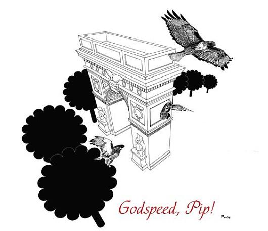 ニューヨーク大学の窓で育った鷹の赤ちゃんが無事に巣立ちました_b0007805_7361466.jpg
