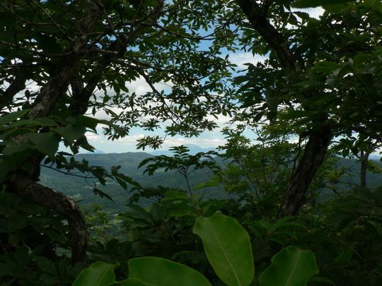 玉峰山(820m)_f0219710_13144058.jpg