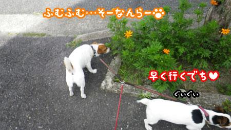 f0129214_14325140.jpg