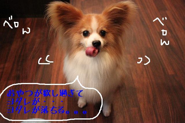 b0130018_9451811.jpg