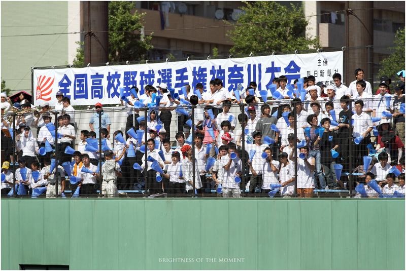 2011 7.13 第93回全国高等学校野球選手権神奈川大会 3_e0200922_15115355.jpg