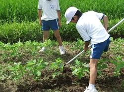 服間小学校の子供たちと草取り_e0061225_9301244.jpg