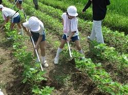 服間小学校の子供たちと草取り_e0061225_9302521.jpg