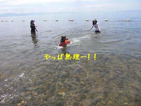 f0129731_2317322.jpg