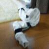f0214948_2054355.jpg