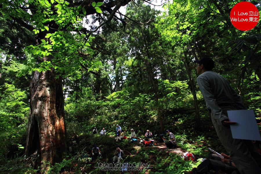 立山カントリーウォーク「森を感じる1日~大人の休日編」04 美女平の立山杉を前に休憩編_b0157849_1357140.jpg