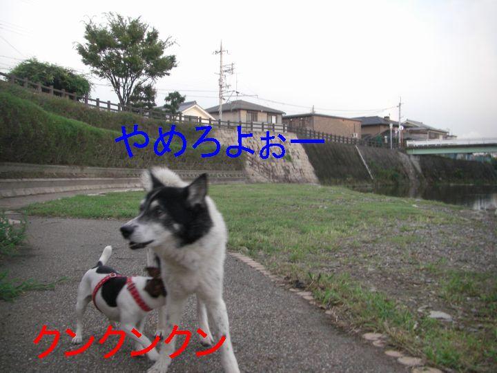 f0053952_10231714.jpg