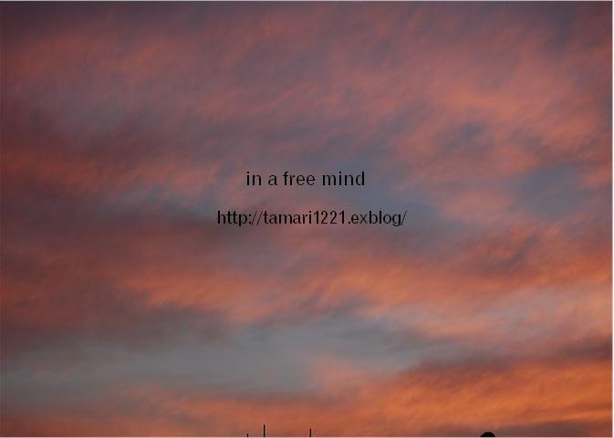 a0129954_15333716.jpg