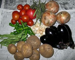 野菜の贈りもの_f0139963_1349484.jpg