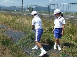 北新庄の大豆草取りありました☆_e0061225_1615554.jpg