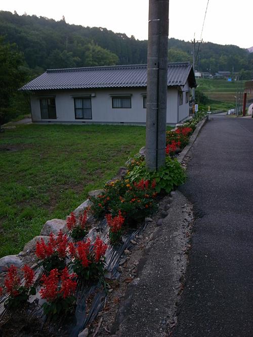 朝の散歩@瑞浪_b0036636_17583683.jpg