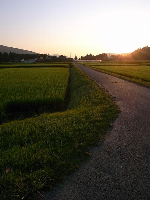 朝の散歩@瑞浪_b0036636_17585726.jpg