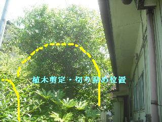 現場打ち合わせ・・・他_f0031037_21202413.jpg