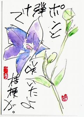 花を鉛筆で・・・。_e0054438_1950588.jpg