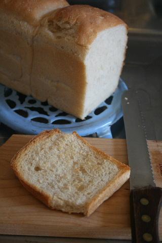 すもも酵母で、山食パン。_f0082141_16153671.jpg