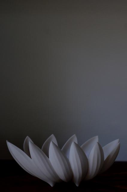 若杉聖子さんのPetal Bowl_d0087761_21575114.jpg
