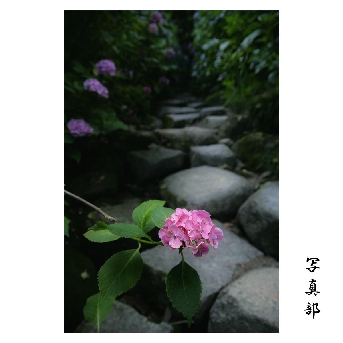 f0021869_0361276.jpg