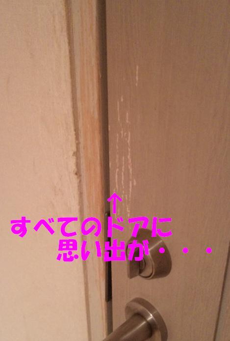 b0207320_2158479.jpg