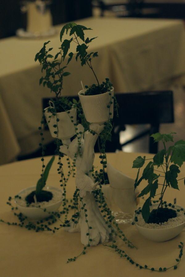 樹木という砂金 シェ松尾青山サロン様への装花_a0042928_19374488.jpg